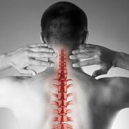 Spine Pain-1