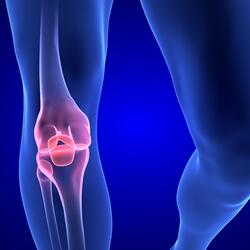 knee joint-501727-edited