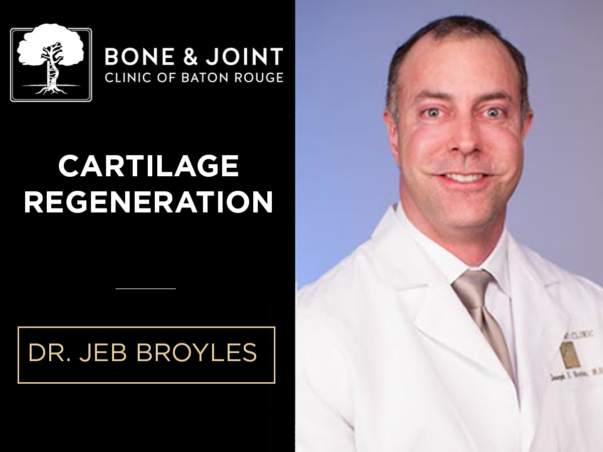 Expertise in Cartilage Regeneration Requires a Curious Mind